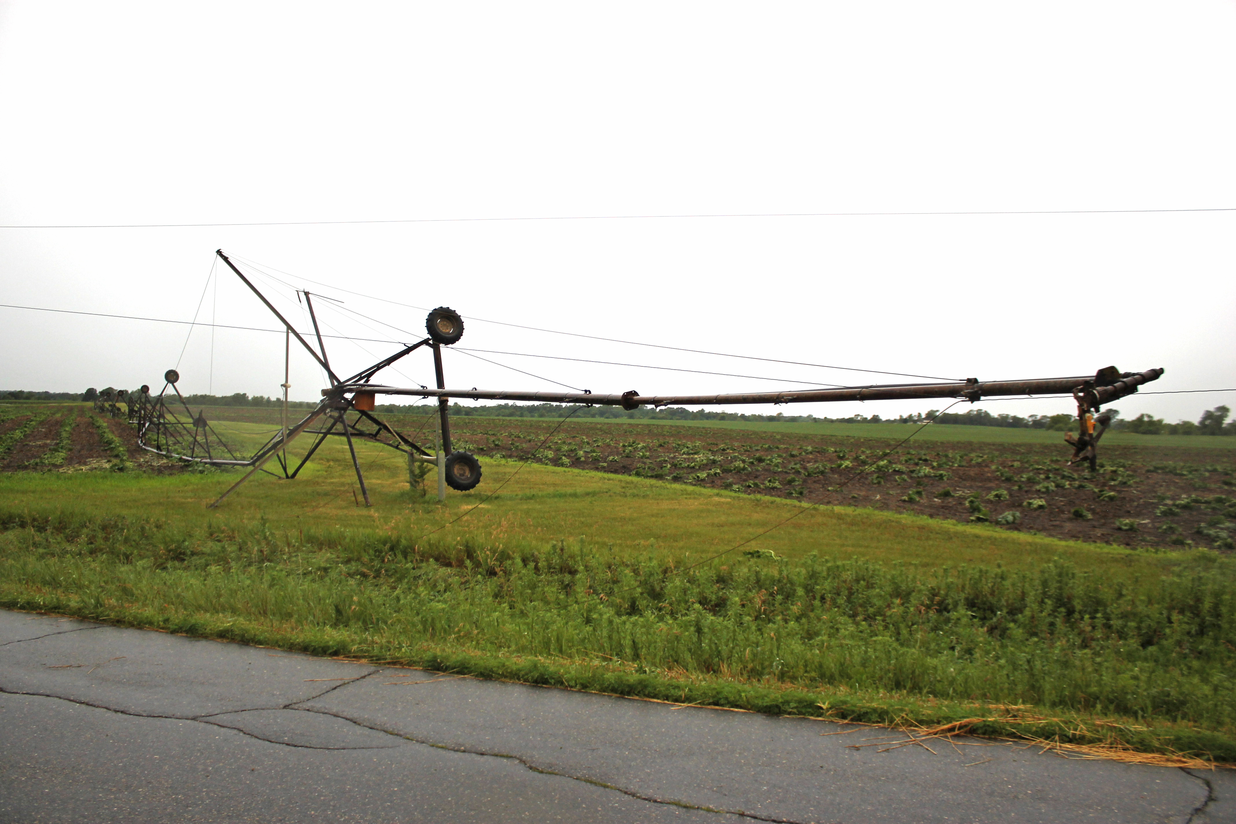 An irrigation system wrapped up in power lines.