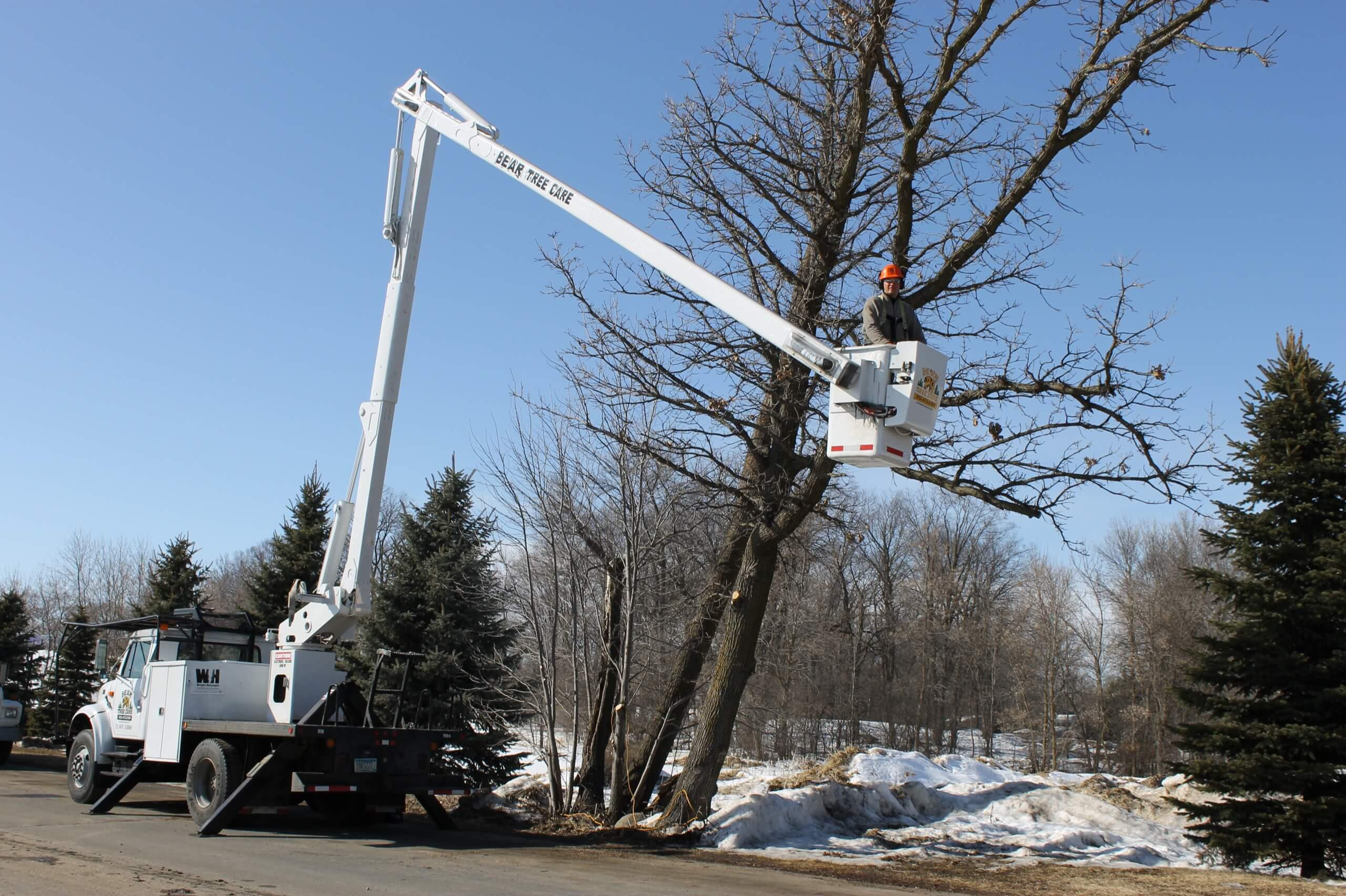 Wright-Hennepin Electric's employee uses aerial bucket to work on trees