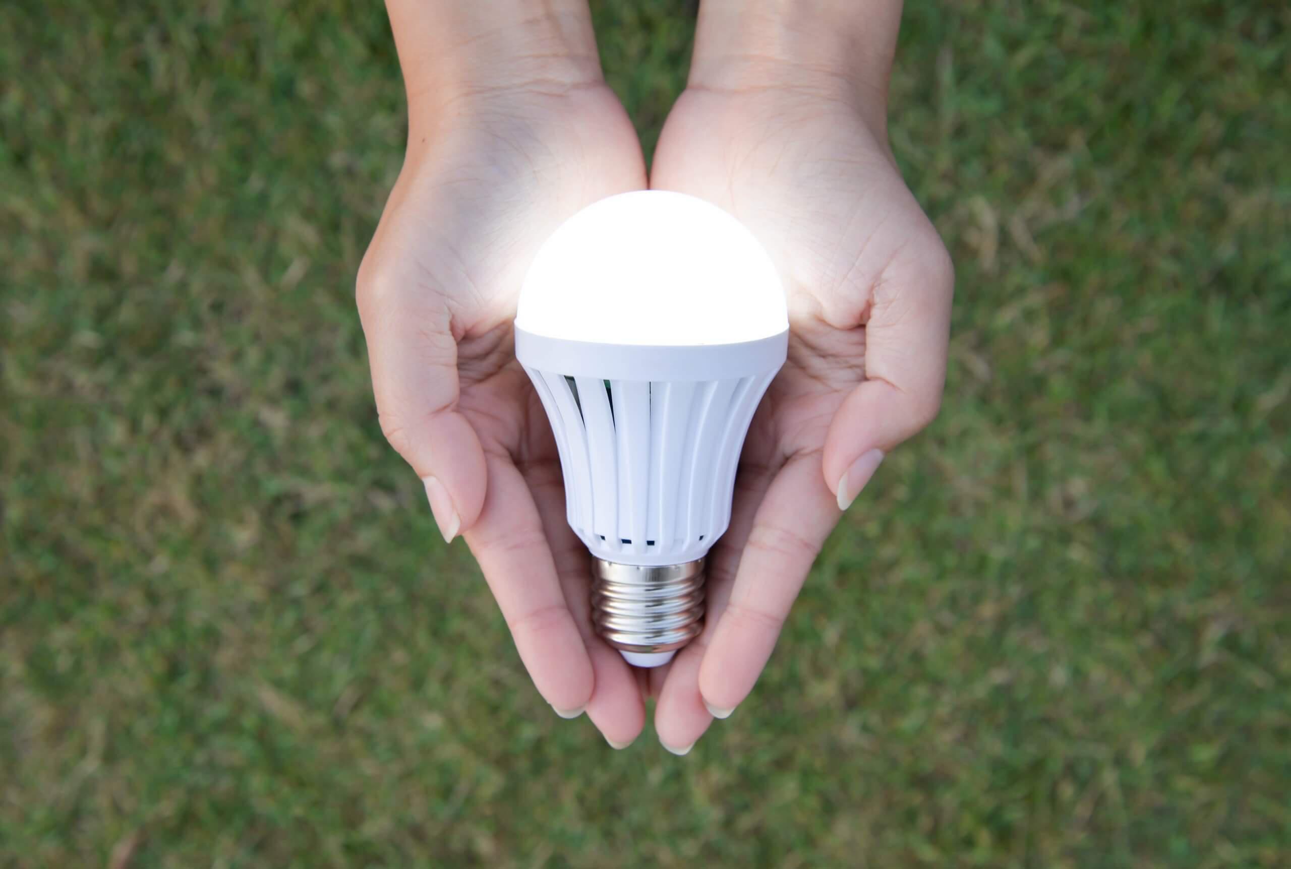 Hands hold energy-saving lightbulb